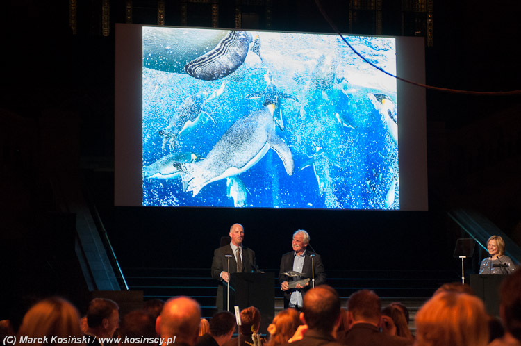 Paul Nicklen - Wildlife Photographer of the Year 2012